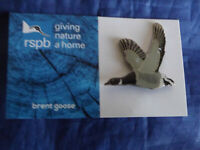 RSPB GNaH brent goose metal pin badge on Blue FR card