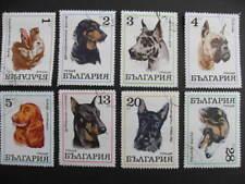 Dogs beautiful Bulgaria 1970 set used SC 1881-88 SSG 2021-28
