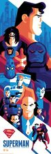 Superman The Animated Series Variant by Tom Whalen Bottleneck BNG