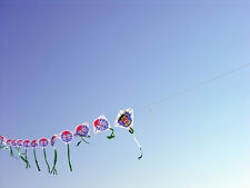 Chinese Kite Train - Dragon, Fly 60 Kites at once