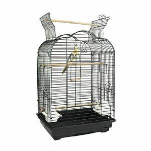 Arizona in Black Bird Cage Parakeets Cockatiels Small Conures Parrot FUN
