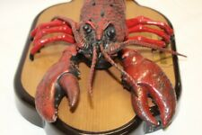 Singing Fish Singing Lobster Big Mouth Larry Lobster tested works and sings