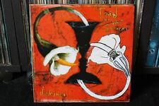 TOAD THE WET SPROCKET DULCINEA ULTRA  RARE  FIRST PRESSING  LP