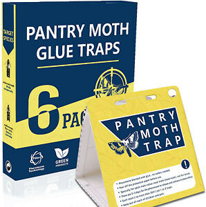 Pantry Moth Traps- Safe and Effective for Food and Cupboard Glue Traps (6 Pack)