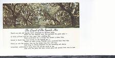 The Legend Of The Spanish Moss  Unused Plastichrome Postcard 544