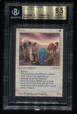 Camel BGS Graded 9.5 Arabian Nights MTG magic Plains Rare!