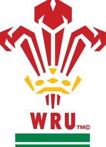 Wales rugby WRU vinyl decal sticker car van laptop rugby viny graphic