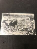 postcard Vintage Settler Homemade Plough The Hermit Pioneer Card Repro  I01