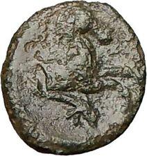 PANORMOS Sicily 336BC Apollo Horse Dolphin Rare  Ancient Greek Coin  i24633