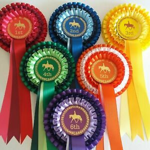 Set 1-6 3Tier Horse Show Rosettes Personalised or non Personalised FREE POSTAGE