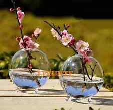 Small Stand Glass Flower Vase Landscape Bottle Table Round Ball Vase Terrarium U