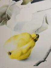 Rosemarie Wüste (XX.) - E.A. / ea - Farb-Lithographie: OBST ABSTRAKT MIT ZITRONE