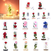 Enchanted Eternal Rose Flower In Glass LED Light Lamp Christmas Valentine's Gift