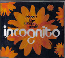 Incognito-Thats The Way Of The World cd maxi single
