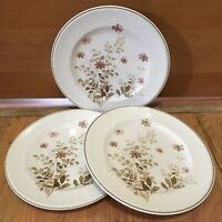 """Versatone NORITAKE Outlook LUNCH SALAD PLATES Pink Flowers Brown JAPAN 8 1/4"""""""