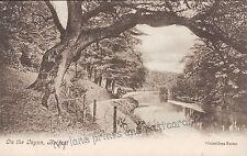 Belfast Pre - 1914 Collectable Antrim Postcards