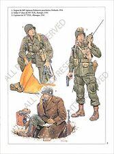 PLANCHE UNIFORMS PRINT WWII US ARMY Infantry Parachutist Netherlands Bastogne