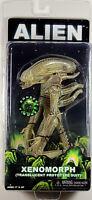 "Aliens ~ TRANSLUCENT XENOMORPH ""BIG CHAP"" ALIEN ACTION FIGURE (Series 7) ~ NECA"