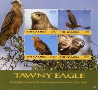 Gambia 2018 MNH Tawny Eagle 4v M/S Eagles Birds of Prey Stamps