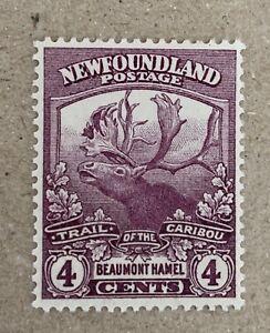 Newfoundland Sg 133a Lmm Cat £28