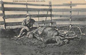 H46/ Medicine Hat Alberta Canada Postcard c1910 Horse Roping Cowboy