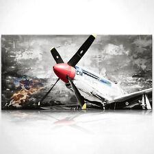 Flugzeug Propellermaschine Bild Leinwand Bilder Wandbild Kunstdruck D0009