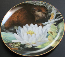 Beaver The Lily Pond In August Decorative Plate  Limited First Edition
