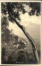 ZOAGLI Provinz Genua Ligurien Cartolina Italiana ca. 1930 Italy Postcard