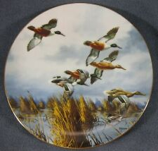 Late Comers Collector Plate by David Maass On The Wing 1992 Ducks
