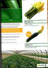 clause sementi zucchino,verde scuro Sayonar fi , busta x1000 semi lungo cilindri