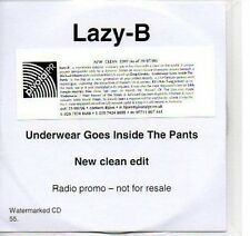 (P608) Lazy-B, Underwear Goes Inside the Pants - DJ CD