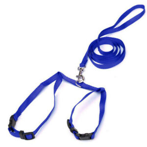 Training Rope Dog Cat Belt Collar Hot Lead String Leash Walking Safety 3 Colors