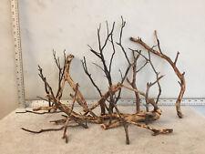 Manzanita Driftwood Aquarium Reptiles Mounts Crafts Perches Lot of 14 Branches