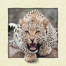 Leopard Panther Lenticular 3D Picture Insect Poster Painting Home Wall Art Decor