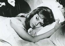MICHELE MERCIER  ANGELIQUE MARQUISE DES ANGES 1964 VINTAGE PHOTO