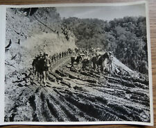 MERRILLS MARAUDERS & CHINESE TROOPS MARCHING On LEDO ROAD BURMA WWII PHOTO 1944