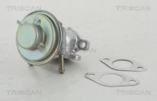AGR-Ventil TRISCAN 881315029 für FIAT IVECO