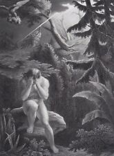 Adam after the sin....Antique print...1868