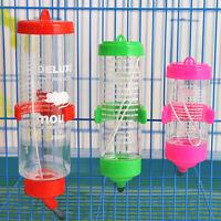 3 Sizes Plastic Hanging Hamster Guinea Pig Rabbit Cute Dispenser Feeder