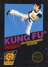 Kung Fu NES Great Condition Fast Shipping