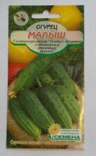 "Cucumber "" Kid "" 10pcs Russian varietal seeds ."