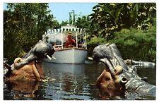 1960s DISNEYLAND ADVENTURELAND JUNGLE CRUISE HIPPOS/HIPPOPOTAMUS~UNUSED POSTCARD