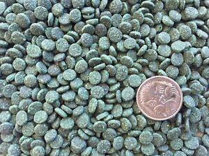 4.9Kg Algae Sinking Pellets Spirulina Wafers 5mm - Bottom Feeders Cat Fish food