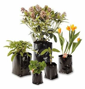 Poly Pots Strong Grow Bag Containers - Many Sizes - Polypots - Plastic Plant Pot