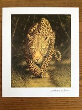 Reproduction of African Mystique by Andrew Bone