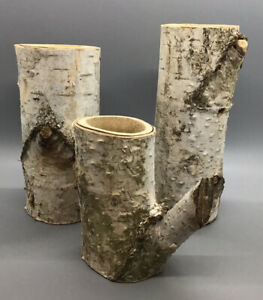 Lot Of 3 Rustic Hand Made Birch Bark Log Tree Candle Holders Cabin Various Sizes