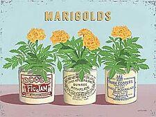 Marigolds In Jam Jars small steel sign  200mm x 150mm      (og)