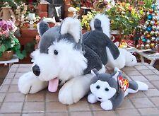 "17""  Husky Dog Lying playing with popy Plush Stuffed Animal Play Toy Gift"