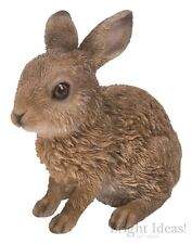 Vivid Arts - REAL LIFE WOODLAND ANIMALS - Leveret Baby Hare Sitting