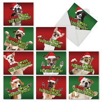 M6611XSG Santa Loves You This Much Dog: 10 Christmas Note Cards With Envelopes